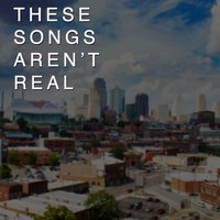 These Songs Aren't Real — Josh Weinstock