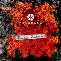 Positive Reaction — Palaraga