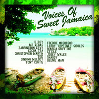 The Voices Of Sweet Jamaica — Shaggy, Mr. Vegas