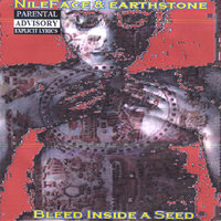 Bleed Inside a Seed — Nile Face & Earth Stone