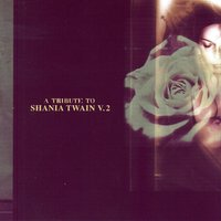 A Tribute To Shania Twain, V.2 — сборник
