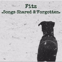 Songs Shared and Forgotten — Fitz