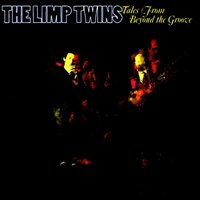 Tales from Beyond the Groove — The Limp Twins