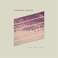 The Morning — Common Deers