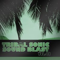 Tribal Sonic Soundblast,Vol.48 — сборник