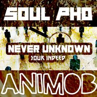 Never Unknown — Soul Phd & Sour Indeed