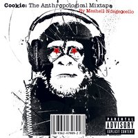 Cookie: The Anthropological Mixtape — Meshell Ndegeocello