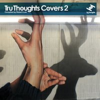 Tru Thoughts Covers, Vol. 2 — Robert Luis