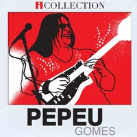 Pepeu Gomes - iCollection — Pepeu Gomes