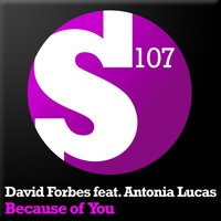 Because Of You — David Forbes, Antonia Lucas
