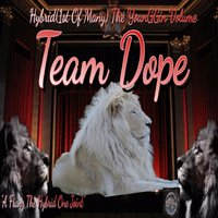 Hybrid (1st of Many) The Younggin Volume — Team Dope