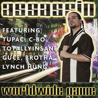 Assassin Worldwide Game — DJ KING ASSASSIN (The Mega Mix Champion Of The World)