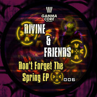 Don't Forget The Spring — Divine & Friends