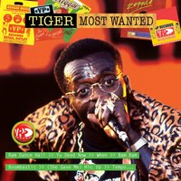 Most Wanted — Tiger