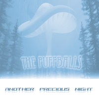 Another Precious Night — The Puffballs