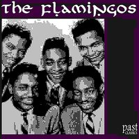 The Very Best of the Flamingos — Flamingos