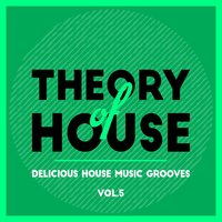 Theory of House (Delicious House Music Grooves), Vol. 5 — сборник