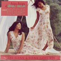 Hip-Hop & RB Meet Reggae On The Flynn & Flynn Label Vol. 1 — Various Artists - Flynn & Flynn Music