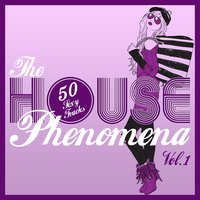 The HOUSE Phenomena, Vol. 1 — сборник