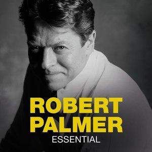 Robert Palmer - Wham Bam Boogie