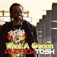 What a Gwaan — Andrew Tosh