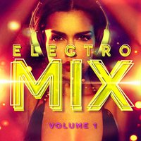 Electro Mix, Vol. 1 (A Selection of Different Styles of Indie Electronic Music) — Electro