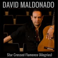 Star Crossed Flamenco (Alegrias) — David Maldonado