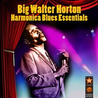 Harmonica Blues Essentials — Big Walter Horton