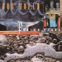 Poison Years — Bob Mould