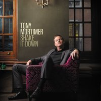 Shake It Down - Single — Tony Mortimer
