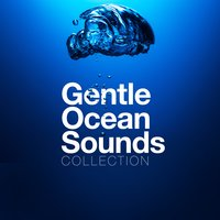 Gentle Ocean Sounds Collection — Ocean Sounds Collection