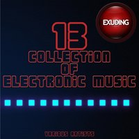 Collection of Electronic Music, Vol. 13 — сборник