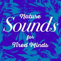Nature Sounds for Tired Minds — Sounds of Nature!