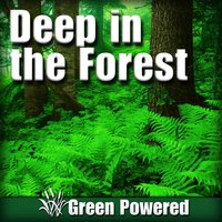 Deep in the Forest (Nature Sound) — Green Powered
