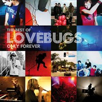 Only Forever - The Best of Lovebugs — Lovebugs