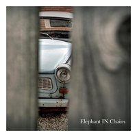 Elephant in Chains — Jonathan Taylor