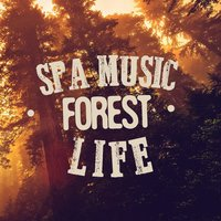Spa Music: Forest Life — SPA Music