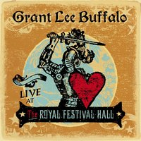 Live At the Royal Festival Hall — Grant Lee Buffalo