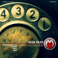 I Hear You Calling — Tolga Diler