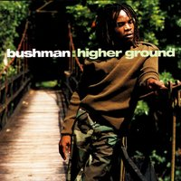 Higher Ground — Bushman