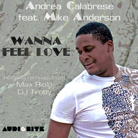 Wanna Feel Love — Andrea Calabrese, Mike Anderson