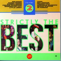 Strictly The Best Vol. 2 — Strictly The Best