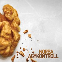 Agykontroll — Norba