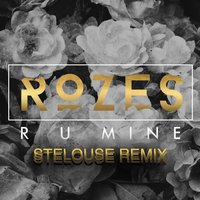 R U Mine — SteLouse, ROZES
