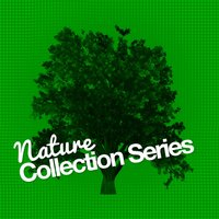 Nature Collection Series — Nature Sound Collection