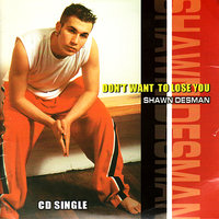 Don't Want To Lose You — Shawn Desman