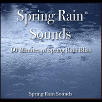 Spring Rain Sounds - 60 Minutes of Spring Rain Bliss — Nelson May