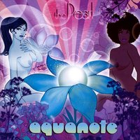 The Pearl — Aquanote