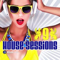 Drizzly House Sessions, Vol. 9 — сборник