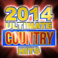 2014 Ultimate Country Hits — Party Nation